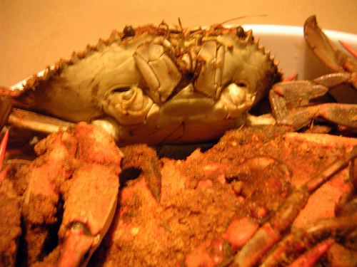 how to kill a crab before cooking