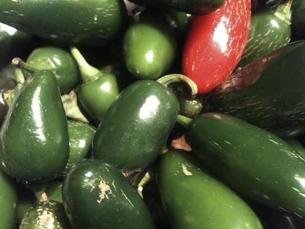 fresh jalapenos from chelbycat's flickr