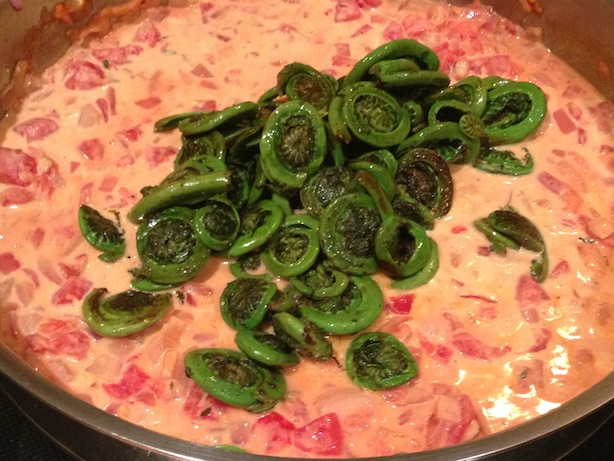 Fiddleheads added to creamy tomato sauce