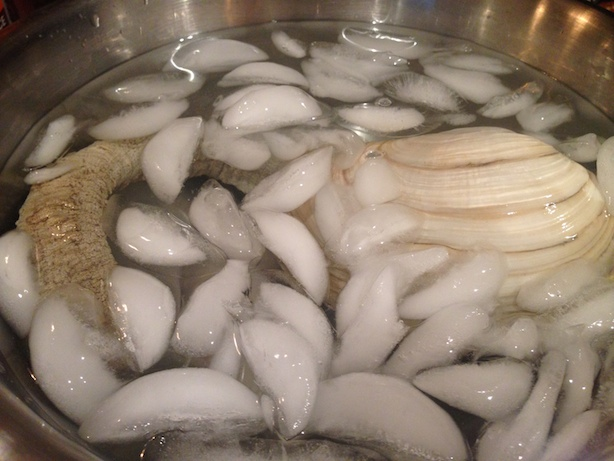 Ice bath for geoduck
